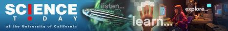 AUDIO: Science Today | How socioeconomic status affects empathy | Empathy and Animals | Scoop.it