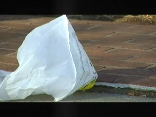 Cities starting to ban plastic bags   Cities of the World   Scoop.it