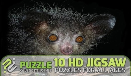 Free Weird Animals Jigsaw - Applications Android sur Google Play | Free Android Games | Scoop.it