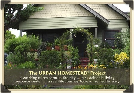 The Urban Homestead® - A City Farm, Sustainable Living & Resource Center, A Path to Freedom towards Self-Sufficiency   Assessment 2 Sustainable living   Scoop.it