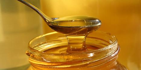 סוכר או דבש - מה יותר בריא - סטטוס באזז | דברים שמעניינים אותנו | Scoop.it