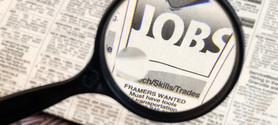 Emploi : la stagnation des métiers de l'environnement | La formation et l'emploi | Scoop.it