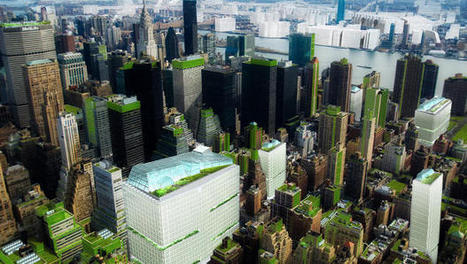 This Is What New York Would Look Like If The Whole City Was A Giant Urban Farm | FoodHub Las Vegas | Scoop.it