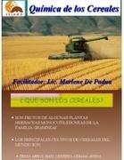 I PARTE_ Química de Los Cereales | Ingeniería en Molineria | Scoop.it