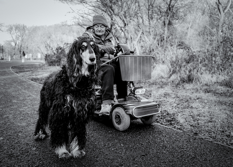 This is England: Wheels and Woofs | Fujifilm X-Series | Scoop.it