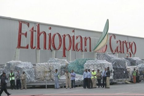 ETHIOPIA SET TO GET A NEW €50M EUROS CARGO TERMINAL | Africa Shipping Logistics | Shipping to Africa | Scoop.it