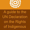 Indigenous global perspectives