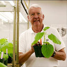 Ebola Vaccine Antibodies Are Made in Tobacco Plants | WIP Weekly News | Scoop.it