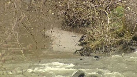 VIDEO. La Dordogne polluée, une catastrophe écologique pour les ... - Francetv info | dordogne - perigord | Scoop.it