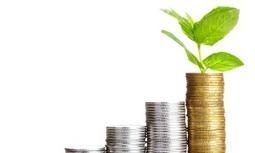 Slim beleggen: hou je emoties onder controle (deel 1) • Psychologie • FinVRIJ | LevensgenieterBlog | Scoop.it