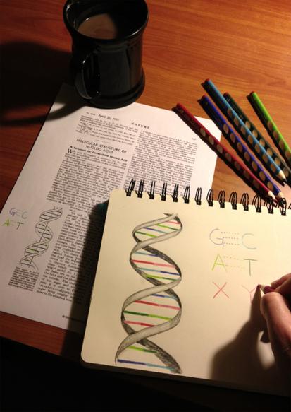 El alfabeto genético crece artificialmente | Genética cotidiana | Scoop.it