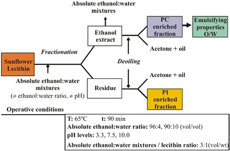 Characterization and emulsifying properties of different sunflower phosphatidylcholine enriched fractions   Lipid emulsions   Scoop.it