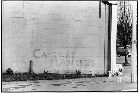 1970s London graffiti tells a tale of a city in flux... | Art for art's sake... | Scoop.it