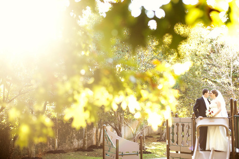 Select Wedding Photographers Who Takes Best Photographs - Tampa | DJamel Photography | Scoop.it
