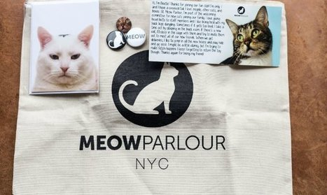 Meow Parlour Will Send You Monthly Gifts, Letters From Cats as Part of the New ... - The Daily Meal | Cats Meow | Scoop.it