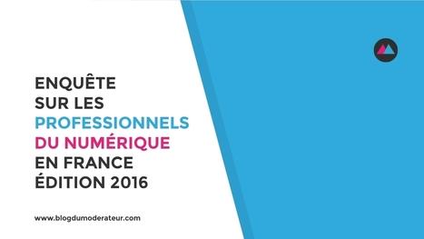 Enquête sur les professionnels du numérique en France - Édition 2016 - Blog du Modérateur | Politique salariale et motivation | Scoop.it