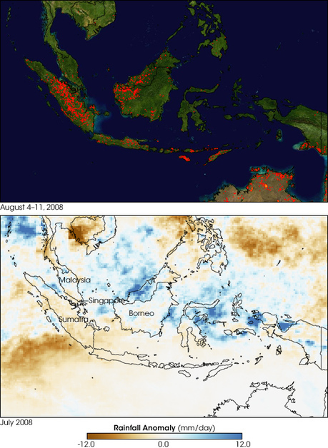 Fires in Indonesia : Image of the Day | Climate and weather | Scoop.it