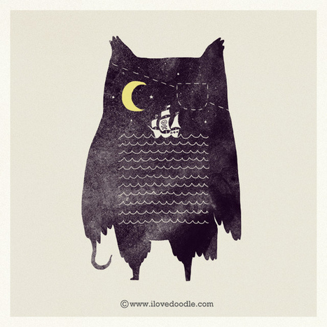 Pirate owl   TRALHA   Scoop.it