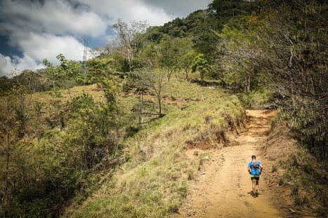 Ultra Marathon Training Guides | Everything you need to know to run a 50km ultra | Trail de l'Armor de l'Argoat et leurs Terroirs | Scoop.it