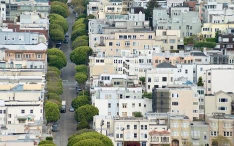 Why Urban Trees Solve So Many of Our Problems | ReConnecting to Nature | Scoop.it