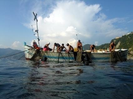 La tonnara di Camogli: tradizione e sostenibilità - Rinnovabili | Immersioni sub in Italia | Scoop.it