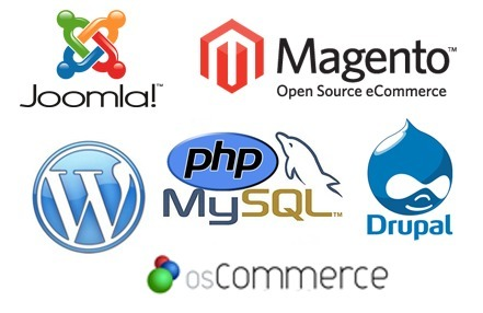 Enhance Your Business Quickly With Open Source Web Development | Technology | Scoop.it