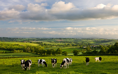 Farmers: UK losing ability to feed itself - Telegraph | APHG Unit V: Agriculture & Rural Land Use | Scoop.it