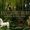 Les Animaux Fantastiques (Harry Potter spin-off)