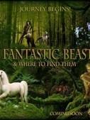 Ce sera une trilogie ! | Les Animaux Fantastiques (Harry Potter spin-off) | Scoop.it