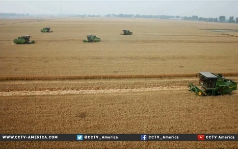New tech reforms in China's agriculture look to modernize market | Producción Lechera | Scoop.it