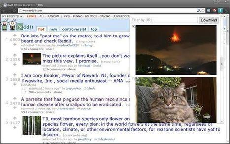 Image Downloader: descarga todas las fotos de una página, o sólo las que señales, con esta extensión Chrome | Recull diari | Scoop.it