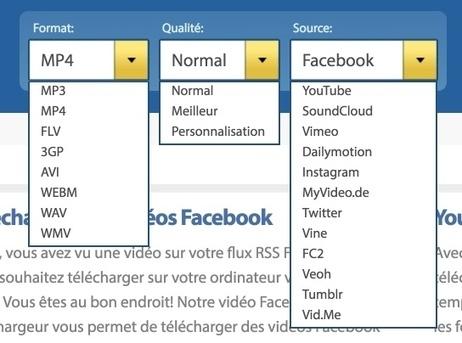 Comment télécharger les vidéos postées sur les réseaux sociaux - Les Outils du Web | Les outils du Web 2.0 | Scoop.it