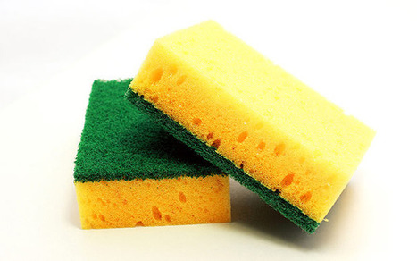 Woman eats 4,000 washing-up sponges  - Strange News | Fiendish Freaky Foods | Scoop.it