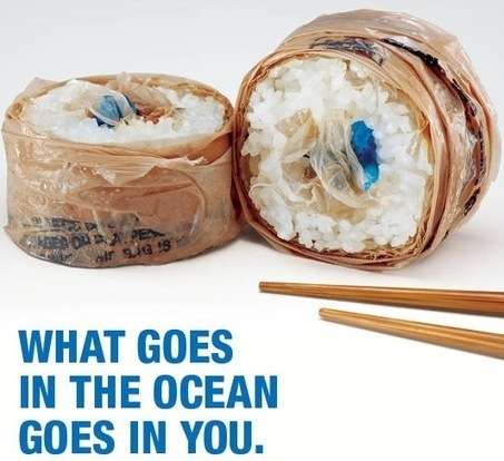 Rise Above Plastics | SurfSpotting | Scoop.it