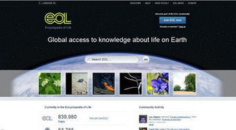 Ambientes Geográficos: Encyclopedia of Life lança trajecto das migrações das diferentes especies | Geoprocessing | Scoop.it