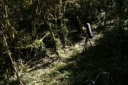 Field Recording - Yannick Dauby | DESARTSONNANTS - CRÉATION SONORE ET ENVIRONNEMENT - ENVIRONMENTAL SOUND ART - PAYSAGES ET ECOLOGIE SONORE | Scoop.it