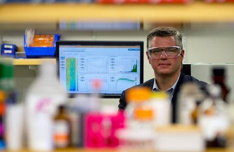 Drugs Aim to Make Several Types of Cancer Self-Destruct | NanoBioPharmaceuticals | Scoop.it