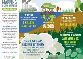 Infographics | Mapping Ocean Wealth | Lorraine's Environmental Change &  Management | Scoop.it