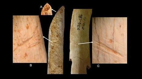 Pileta de Prehistoria: Los neandertales manipulaban los cadáveres al poco tiempo de morir | Aux origines | Scoop.it