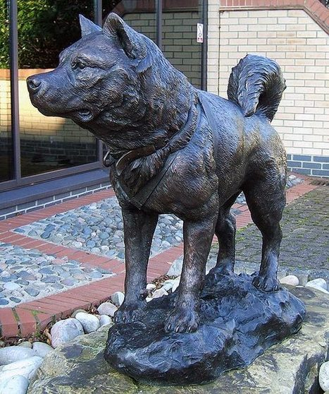 Antarctic Sledge Dog Memorial | Sleddog | Scoop.it