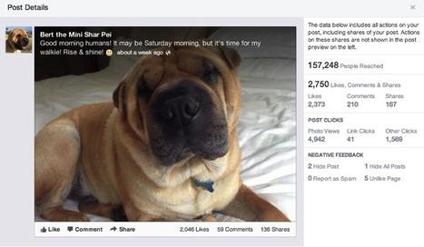 Update Facebook Seitenstatistiken: Viralität wird zu Engagement und mehr Klarheit für PTAT | Social Media Consulting | Scoop.it