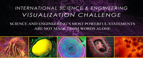 International Science and Engineering Visualization Challenge - National Science Foundation | Med News | Scoop.it