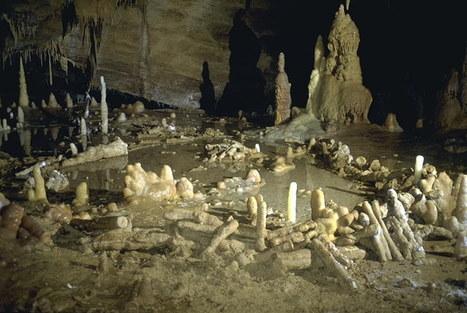 Une grotte habitée il y a 176 000 ans découverte | Aux origines | Scoop.it