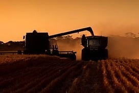 US crop insurance shields farmers from drought   Sustain Our Earth   Scoop.it
