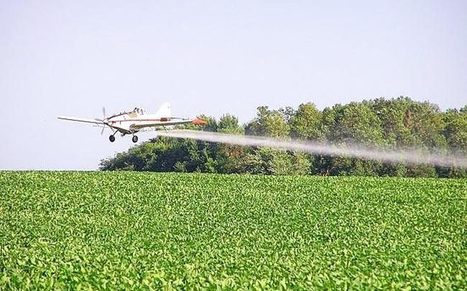 New GE Soybeans Are Projected to Increase the Use of Carcinogenic Herbicides | Searching for Safe Foods | Scoop.it