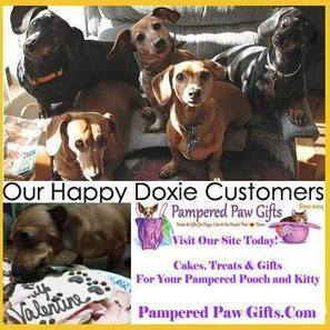 Timeline Photos | Facebook | Pet Health and Happiness | Scoop.it