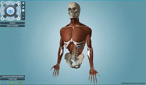 Anatronica: disecciona cada centímetro del cuerpo humano en 3D -aulaPlaneta | APRENDIZAJE | Scoop.it