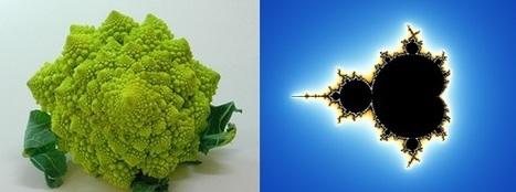 El efecto Richardson, la clave del estudio moderno de los fractales | Los Fractales | Scoop.it