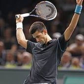 Tennis : Djokovic détrône Ferrer à Bercy | Sports | Scoop.it