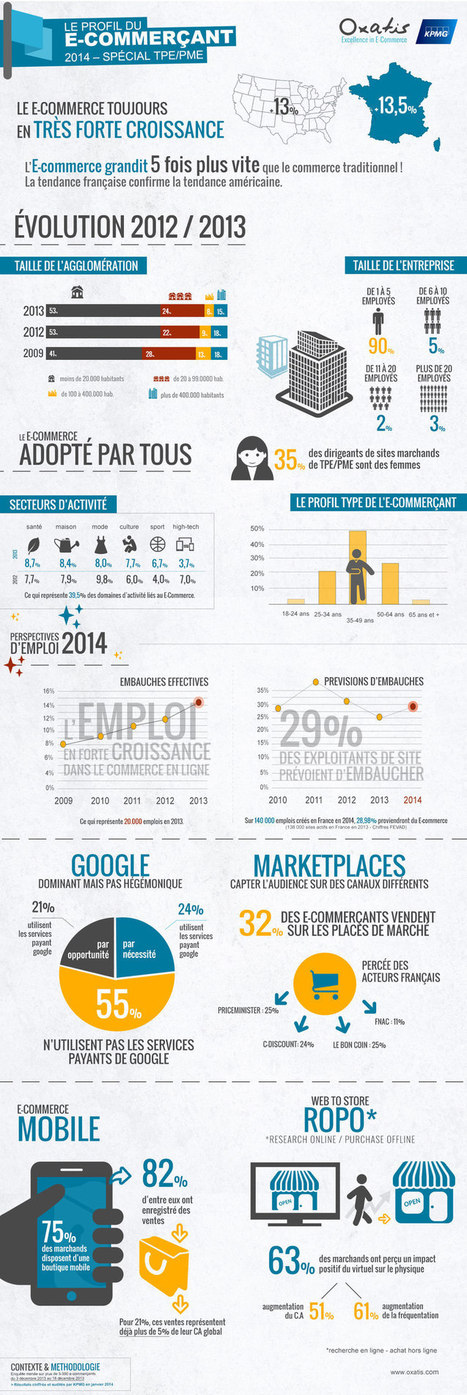 Infographie : Le profil type de l'e-commerçant français | Infographies E-commerce | Scoop.it